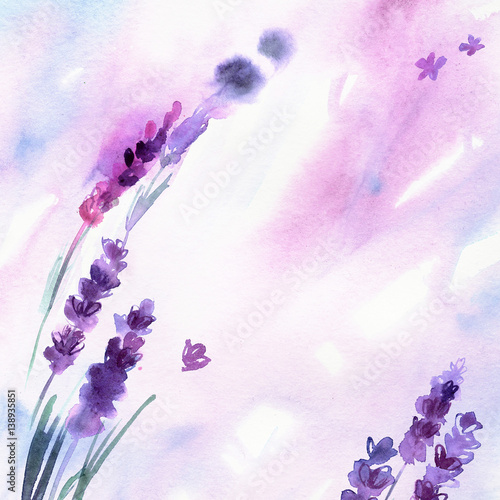 Watercolor hand painted lavender flowers on white background. Invitation. Wedding card. Birthday card. - 138935851