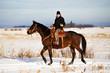 A young adult woman riding a horse in a rural countryside winter landscape