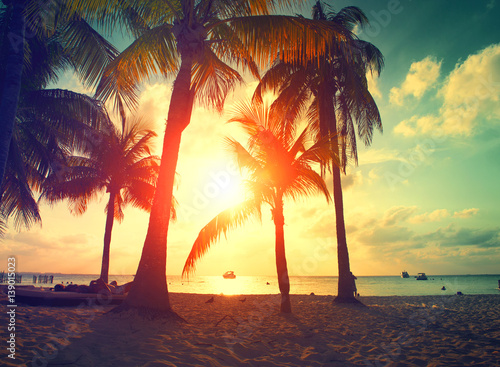 Sunset beach with palm trees and beautiful sky. Paradise scene of Caribbean Island