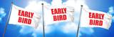 early bird, 3D rendering, triple flags - 139033636