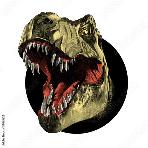 Fototapeta dinosaur head sketch vector color drawing