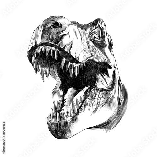Fototapeta dinosaur head sketch vector