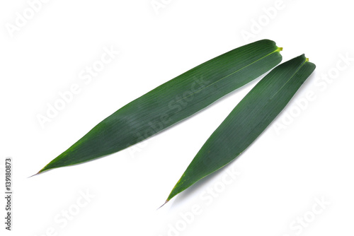 Bamboo leaf isolated on white background