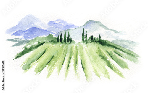 Keuken foto achterwand Wit Abstract landscape with vineyard / Watercolor illustration, mountain landscape with fields