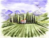 Landscape with vineyard / Watercolor illustration, Alpine mountain landscape