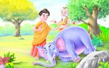 Buddha  and saint looking an elephant