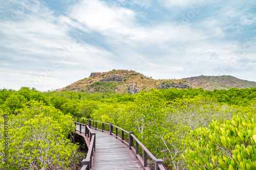 Wood boardwalk between Mangrove forest with mountain and blue sky ,Study natural trails - 139391089