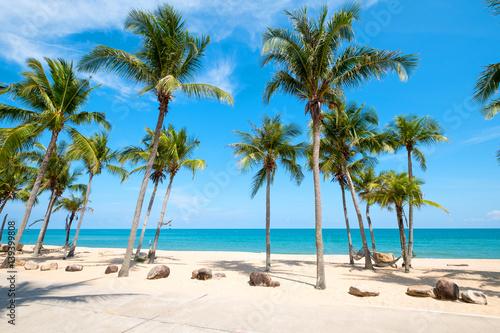 Fotobehang Caraïben Landscape of coconut palm tree on tropical beach in summer.