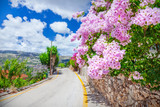 Street in Kefalonia, Greece - 139425616