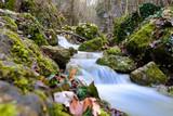 idyllische Landschaft mit Wasser und Moos