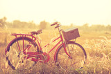 Fototapety beautiful landscape image with Bicycle at summer grass field.classic bicycle,old bicycle style for greeting Cards ,post card