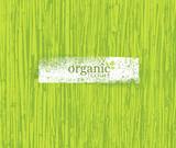 Fototapety Organic Nature Friendly Eco Bamboo Background. Bio Vector Texture.