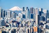 Tokyo mit Fuji im Hintergrund