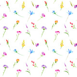 Floral seamless pattern of a wild flowers and herbs. Buttercup, cornflower, clover, bluebell, snowdrop flowers. Watercolor hand drawn illustration. White background.