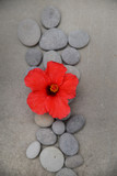 Spa stone with red hibiscus on grey background.