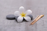 Spa stone with frangipani on grey background.