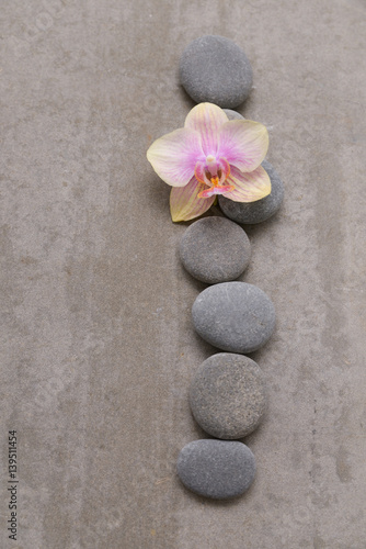 Tuinposter Spa Gray stone with orchid on grey background.