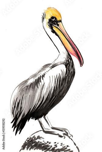 Watercolor pelican - 139518292