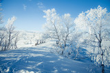 A beautiful white landscape if a snowy Norwegian winter day with a small wooden foot bridge