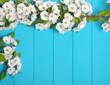 blossom on blue wood background