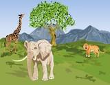 Afican wildlife vector landscape. Elephant, giraffe, lion.