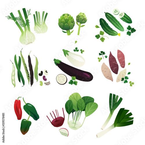 Collection of clip art vegetable illustrations: fennel, artichoke, cucumber, bean, eggplant, sweet potato, poblano pepper, kohlrabi and leek