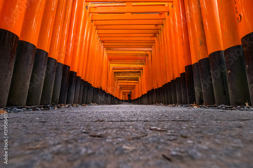 Staande foto Kyoto Fushimi Inari Shrine in Kyoto, Japan.It is famous for its thousands of vermilion torii gates.