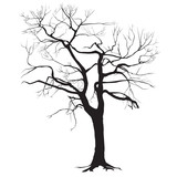 Tree trunk silhouette without leaves - 139584610