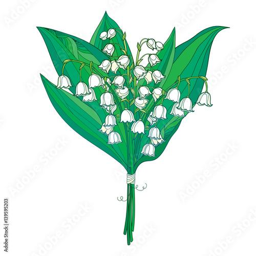 Vector bukiet z konspektu bia? Ego Lily of the valley lub Convallaria kwiaty i zielone listowie wyizolowanych na bia? Ym tle. Ozdobny element kwiatowy na wiosnę. Pęczek może kwiat lilii w stylu kontur.