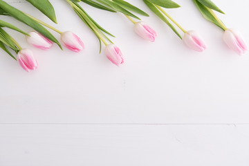 Top view on pink tulips in a row on white table