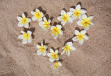 Heart of flowers frangipani on sand. Tropical flowers.