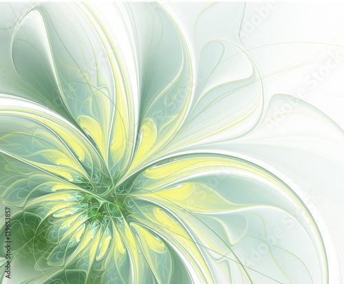abstrakta-szybki-dorosniecie-kwiat-na-lekkim-tle