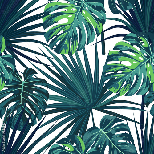Tropical background with jungle plants. Seamless vector tropical pattern with green sabal palm and monstera leaves. © Ms.Moloko