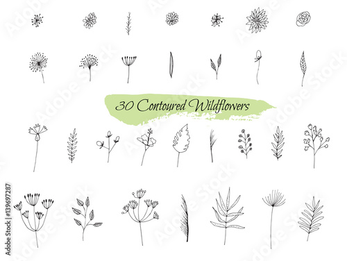 A collection of handmade sketches with plants. - 139697287