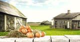 eggs and farm  - 139719460
