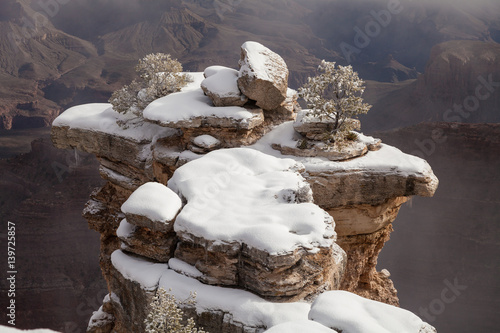 Foto op Canvas Cappuccino Winter Landscape at the South Rim Grand Canyon