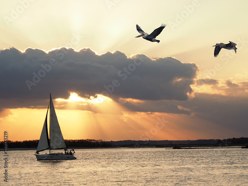Sailboat Sails By as the Sun Sets and Pelican Fly Poster