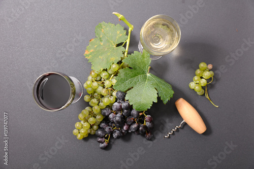 grape and wine Poster