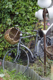 Vintage garden bicycle