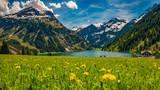 Vilsalpsee im Frühling mit Blumenwiese und Berge im Hintergrund Tannheimer Tal Österreich