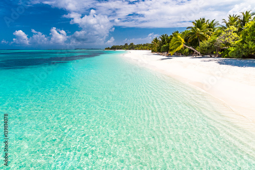 Foto op Canvas Tropical strand Maldives paradise beach. Perfect tropical island. Beautiful palm trees and tropical beach. Moody blue sky and blue lagoon. Luxury travel summer holiday background concept.