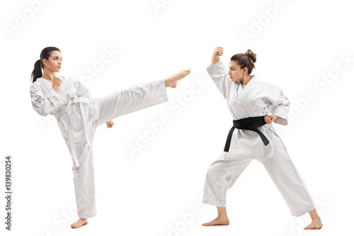 Two young women in kimonos practicing martial arts Poster