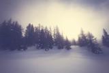 paesaggio invernale con nebbia