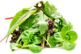 Grüner Salat isoliert