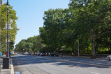 New York empty street near Central Park, green trees in a sunny day