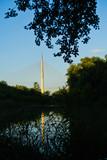Small lake with Ada cable bridge in a background, Belgrade, Serbia