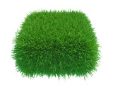 Square of green grass field over white background. 3d rendering