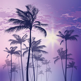 Silhouette of palm tree and sunset sky. Vector illustration - 139935065