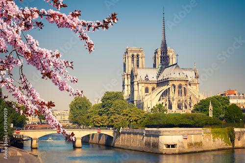 Notre Dame de Paris at spring, France Poster