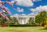 The White House at spring, Washington DC - 139950254